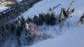 Flight over Carpathian mountains covered with snow. Clear frosty weather. Aerial view on the Carpathian mountains covered with snow. Clear frosty weather stock video
