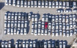 Aerial view cars for sale stock lot row, Car Dealer Inventory, parking lot. One red and all white. Drone stock images