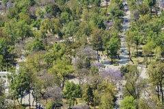 Aerial view of Central Alameda Park. From Mirador Torre Latino Royalty Free Stock Photo