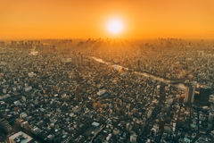 Aerial view of a city at sunset Stock Image