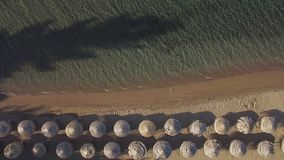 Aerial vacation scene of sea and beach with straw umbrellas. Aerial view of clear sea and beach with rows of straw sun umbrellas with sunbeds under them stock video