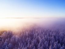 Aerial view clouds over forest during winter colors. Aerial view of forest and clouds. Aerial drone view of the forest. Aerial top. View cloudscape. Texture of stock photography