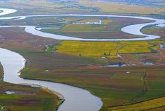 Aerial view of coastal wetlands Stock Images