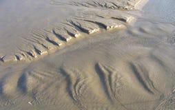 Aerial View of Coastline. Aerial view of sandy coastline Stock Image