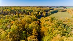 Aerial view of the colorful autumn forest. Aerial view. Aerial view of the colorful autumn forest royalty free stock image