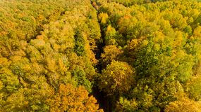 Aerial view of the colorful autumn forest. Aerial view. Aerial view of the colorful autumn forest stock photos