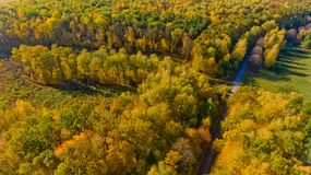 Aerial view of the colorful autumn forest. Aerial view stock photo