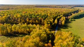 Aerial view of the colorful autumn forest. Aerial view. Aerial view of the colorful autumn forest stock image