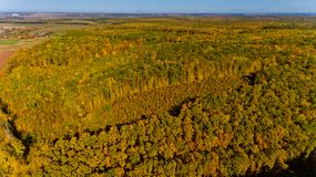 Aerial view of the colorful autumn forest. Aerial view royalty free stock photos