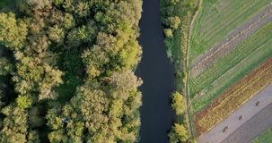 Aerial view of the colorful autumn forest. Look down on autumn forest. Looking down on amazingly beautiful autumn. Colorful trees. Flying over the beautiful stock video footage