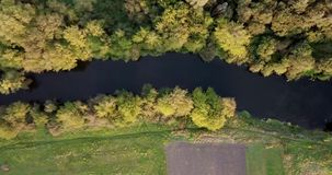 Aerial view of the colorful autumn forest. Look down on autumn forest. Looking down on amazingly beautiful autumn. Colorful trees. Flying over the beautiful stock footage