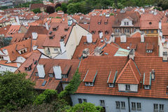 Aerial view of the colorful orange roofs of old houses in the city of Europe Prague Stock Photos