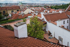 Aerial view of the colorful orange roofs of old houses in the city of Europe Prague Stock Image