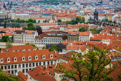 Aerial view of the colorful orange roofs of old houses in the city of Europe Prague Royalty Free Stock Photo