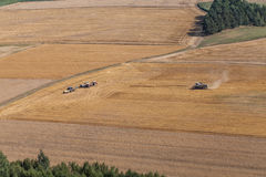 Aerial view of combine on the harvest field Royalty Free Stock Photo