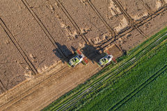 Aerial view of combine on harvest fields Royalty Free Stock Photography