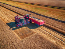 Aerial view of Combine harvester agriculture machine harvesting Royalty Free Stock Images