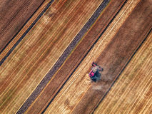 Aerial view of Combine harvester agriculture machine harvesting. Golden ripe wheat field stock photography