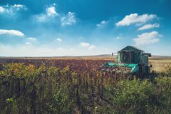 Aerial view of Combine harvester agriculture machine harvesting stock photos