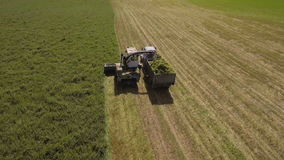 AERIAL VIEW. Combine Harvester Cutting Field stock footage
