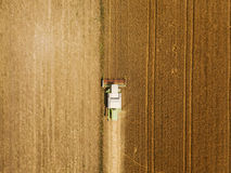 Aerial view of combine harvester harevsting wheat royalty free stock photo
