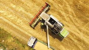 Aerial view of a combine harvester pouring wheat on a truck in field in 4k stock video