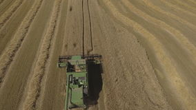 Aerial view combine harvesting a field of wheat. stock footage
