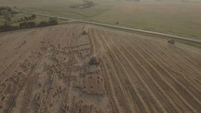 Aerial view combine harvesting a field of wheat. Two combine harvester on a wheat field at harvest.Aerial view of agricultural land with harvester.Combine stock video footage
