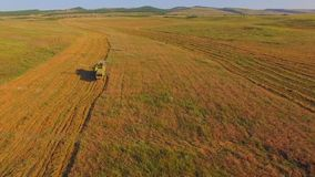 AERIAL VIEW. Combine Machine Reaping Golden Field stock footage