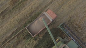 Aerial view combine unloads grain in the truck. Aerial view combine harvester unloads grain in the truck harvesting wheat on agricultural land.Combine unloads stock video footage