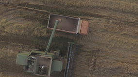 Aerial view combine unloads grain in the truck. Aerial view combine harvester unloads grain in the truck harvesting wheat on agricultural land.Combine unloads stock footage