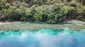 Aerial View of Coral Reef and Island in Raja Ampat. The scenic islands in Raja Ampat, are surrounded by healthy, shallow coral reefs. This remote, tropical stock footage