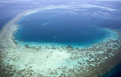 Aerial view of coral reefs. Royalty Free Stock Photo