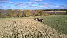 Aerial view corn harvester and truck drive to field end. Pictorial aerial boundless panorama corn harvester and truck drive to field end under blue sky with stock video footage