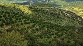 Aerial view of a country landscape in Turkey III royalty free stock images