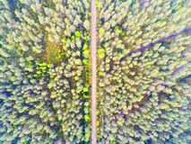 Aerial view of a country road in the forest. Beautiful landscape. Captured from above with a drone. Aerial bird`s eye road. Aeria. L top view forest. Texture of stock photos