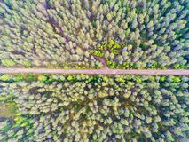 Aerial view of a country road in the forest. Beautiful landscape. Captured from above with a drone. Aerial bird`s eye road. Aeria. L top view forest. Texture of stock image
