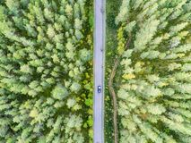 Aerial view of a country road in the forest with moving cars. Beautiful landscape. Captured from above with a drone. Aerial bird`s stock images