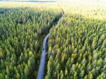 Aerial view of a country road in the forest with moving cars. Beautiful landscape. Captured from above with a drone. Aerial bird`s royalty free stock images