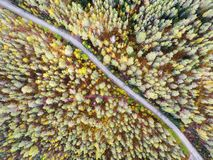 Aerial view of a country road in the forest with moving cars. Beautiful landscape. Captured from above with a drone. Aerial bird`. S eye road with car. Aerial stock photo