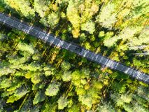 Aerial view of a country road in the forest with moving cars. Beautiful landscape. Captured from above with a drone. Aerial bird` stock photos