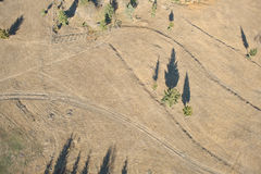 Aerial view of a country road and pine trees Royalty Free Stock Photos