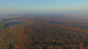 Aerial view of the countryside. Mount forest stock footage