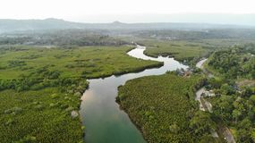 Aerial view, Abatan river, Filipino. Aerial view created by drone. Abatan river is near Cortes, on Bohol Island stock image