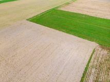 Aerial view. Crop agricultural fields