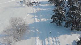 Aerial view cross-country skiing man cross-country skiing on a lovely sunny winter day. stock footage