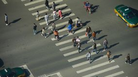 Aerial view of crosswalk & traffic at an urban city,zebra crossing. This is Aerial view of crosswalk & traffic at an urban city,zebra crossing stock video