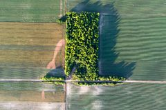 Aerial view of agricultural fields with problematic parts. Aerial view of cultivated agricultural field with green crops and problematic parts of land Royalty Free Stock Photography