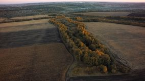 Aerial view of cultivated field from drone pov, top view.  stock photos