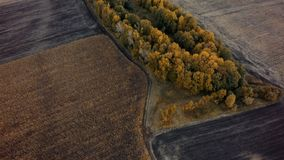 Aerial view of cultivated field from drone pov, top view.  stock photography